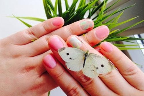 Manicure and nail art
